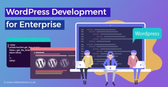 Why Enterprises Should Opt for The WordPress to Grow Business